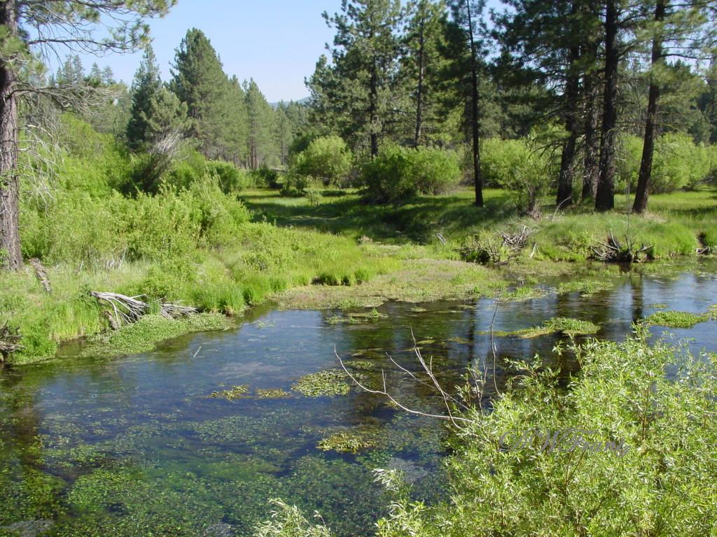 Hat Creek 6